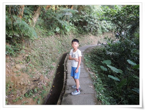 青山瀑布步道[新北石門]4