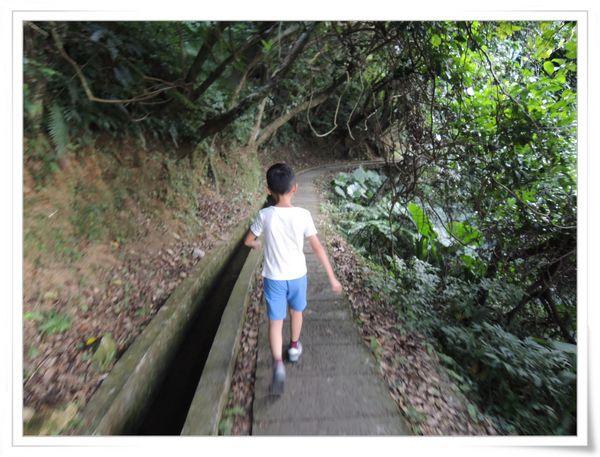 青山瀑布步道[新北石門]5