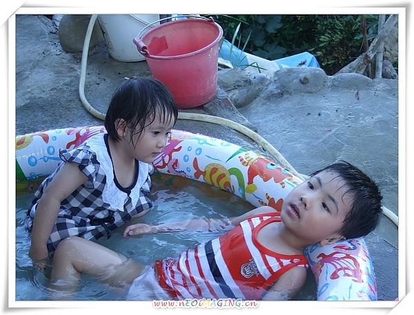 INTEX熱帶魚充氣游泳池9.jpg