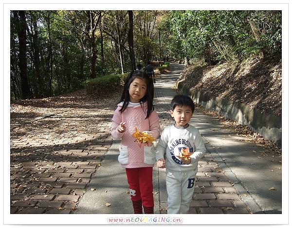 奧萬大國家森林遊樂區[Day 2]36.jpg
