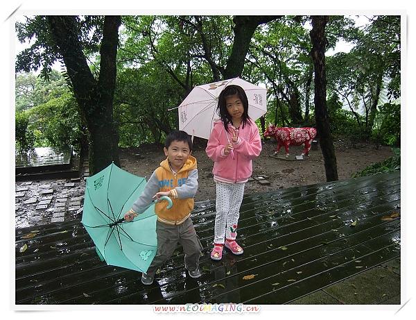 草山國際藝術村[2010台北花遊記]7.jpg