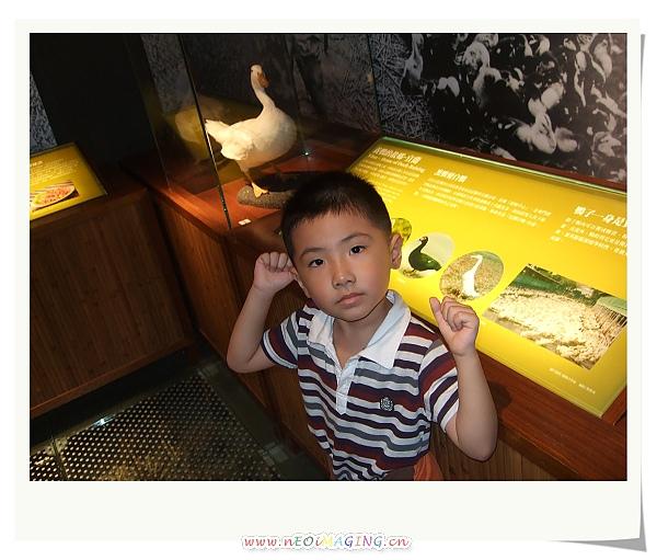蘭陽博物館II22.jpg