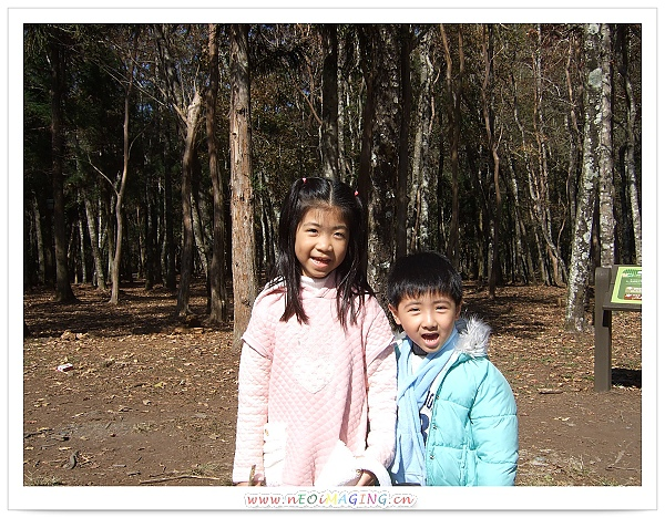 奧萬大國家森林遊樂區[Day 2]21.jpg
