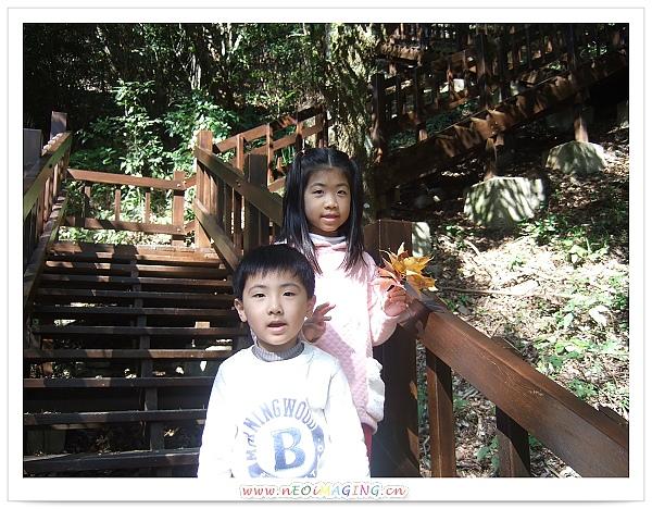 奧萬大國家森林遊樂區[Day 2]37.jpg