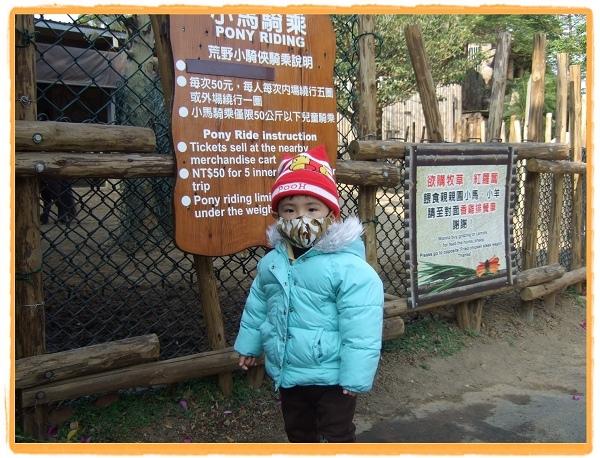 六福村主題樂園30.jpg