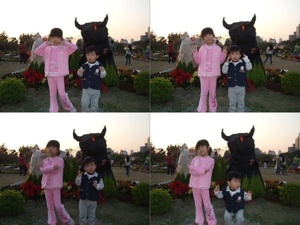 2009台北花卉展5.jpg