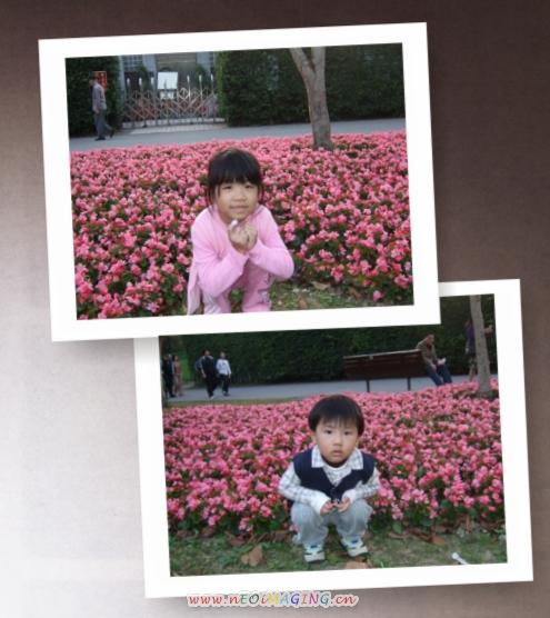 2009台北花卉展13.jpg