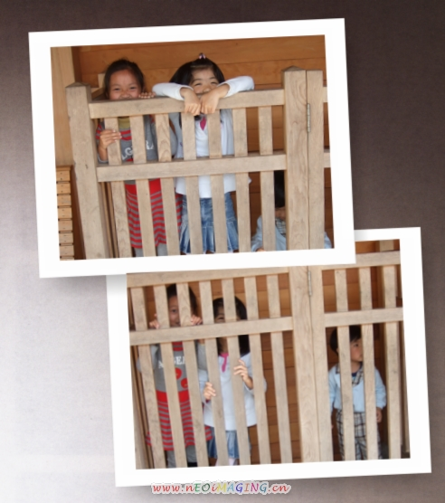 羅東林業文化園區14.jpg