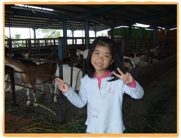宜農牧羊場4.jpg