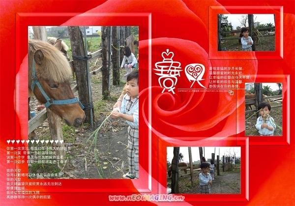 宜農牧羊場8.jpg