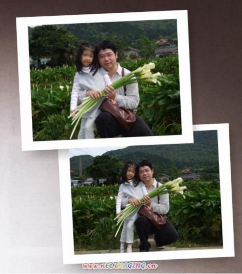 2009竹子湖海芋季5.jpg