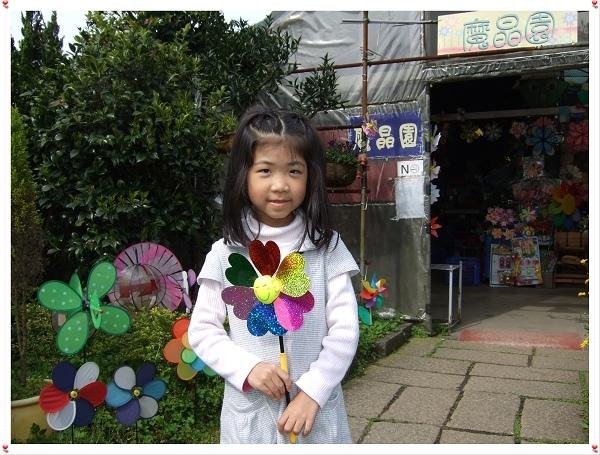 2009竹子湖海芋季12.jpg