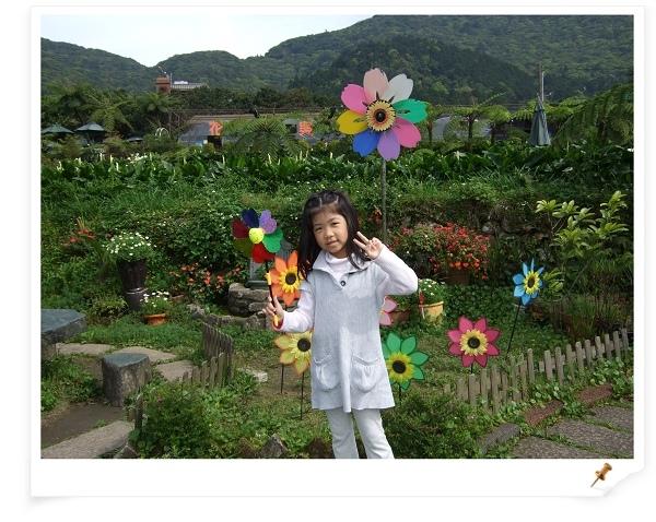 2009竹子湖海芋季14.jpg