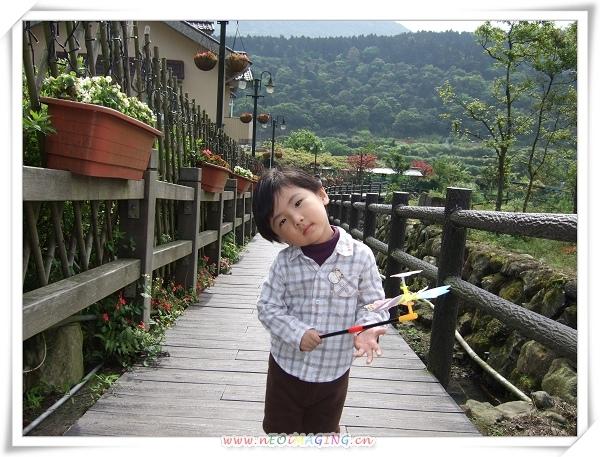 2009竹子湖海芋季15.jpg