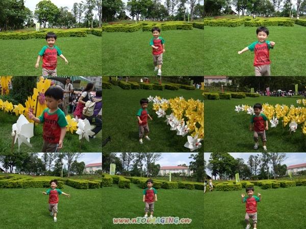 2009客家桐花祭2.jpg