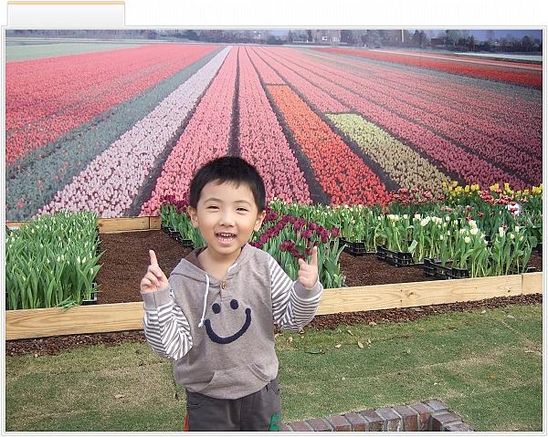 2010 臺北國際花卉博覽會[美術公園區]2.jpg