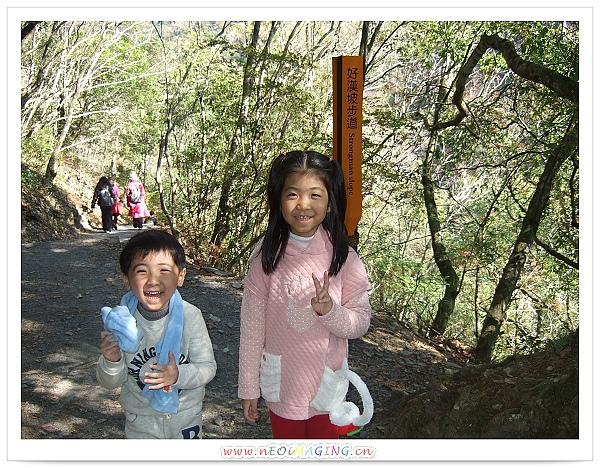 奧萬大國家森林遊樂區[Day 2]14.jpg