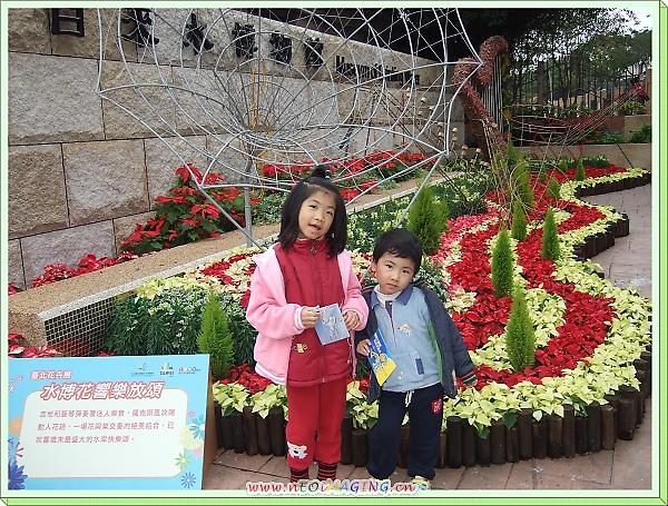 自來水博物館「繽紛公館水岸」花卉展19.jpg