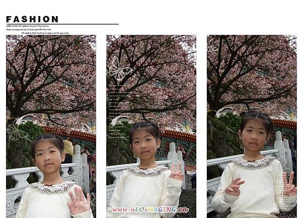 2010淡水天元宮賞櫻花3.jpg