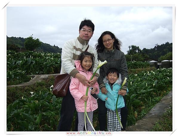 2010竹子湖海芋季6.jpg