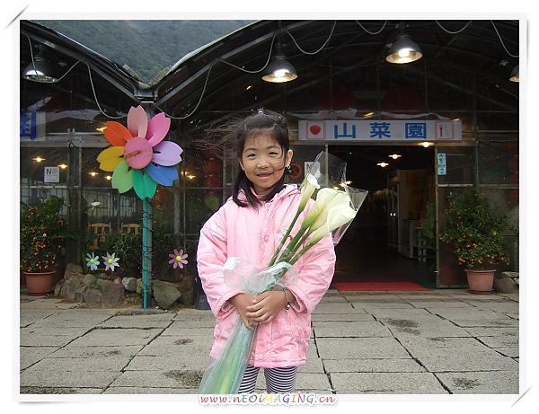 2010竹子湖海芋季14.jpg