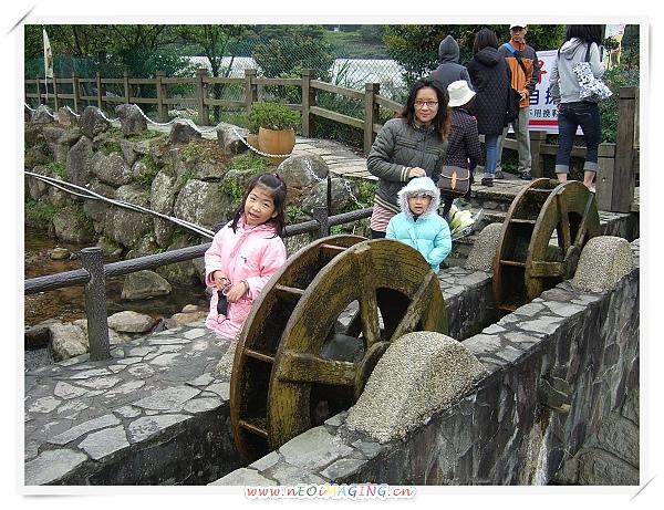 2010竹子湖海芋季15.jpg