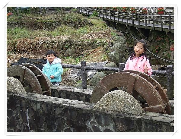 2010竹子湖海芋季17.jpg