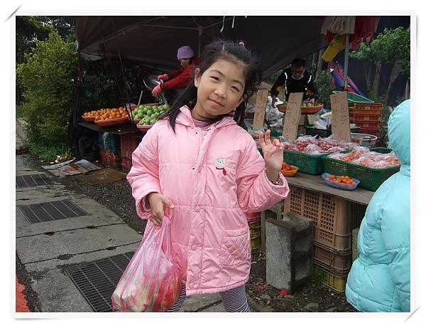 2010竹子湖海芋季22.jpg