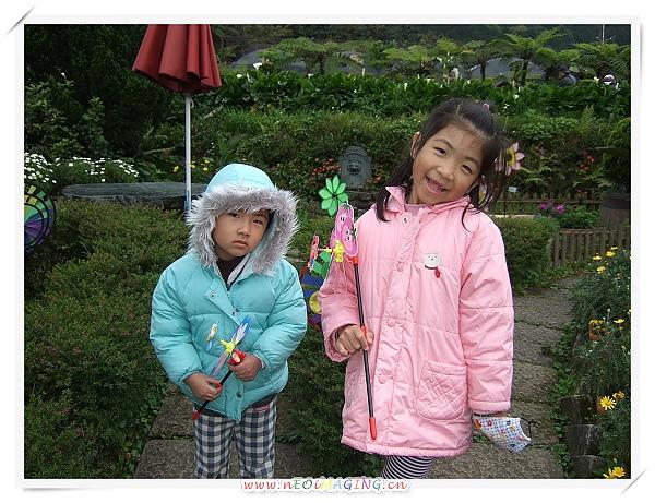 2010竹子湖海芋季24.jpg