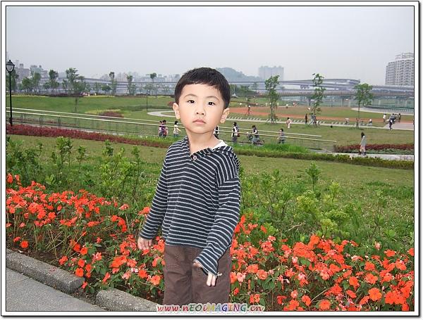 陽光運動公園[新店碧潭]8.jpg