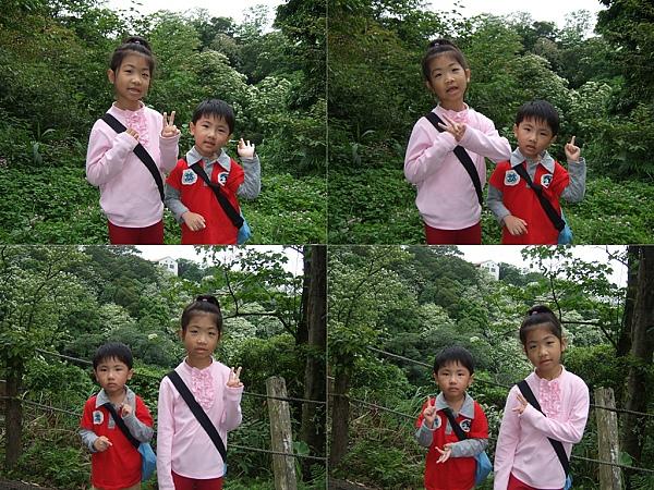 2010客家桐花祭[自然桐芬芳]6.jpg