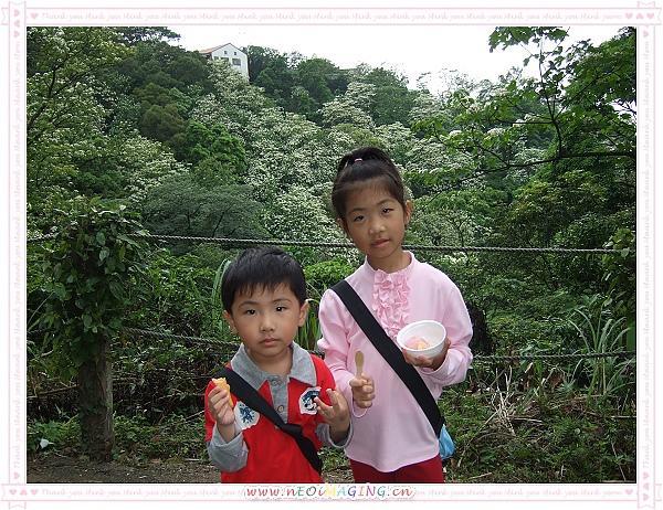 2010客家桐花祭[自然桐芬芳]10.jpg
