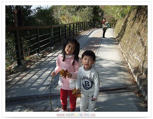 奧萬大國家森林遊樂區[Day 2]35.jpg