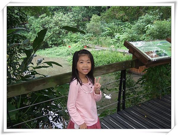 芝山文化生態綠園[2010台北花遊記]3.jpg