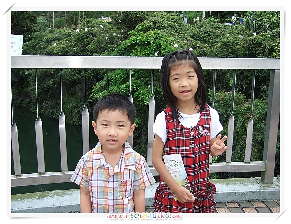 2010臺北縣坪林包種茶節[坪林老街]7.jpg