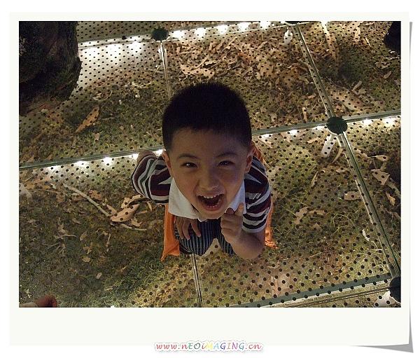 蘭陽博物館II8.jpg