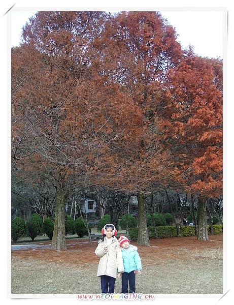 奧萬大國家森林遊樂區[Day 1]6.jpg
