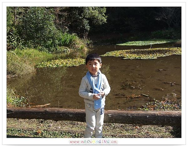 奧萬大國家森林遊樂區[Day 2]9.jpg