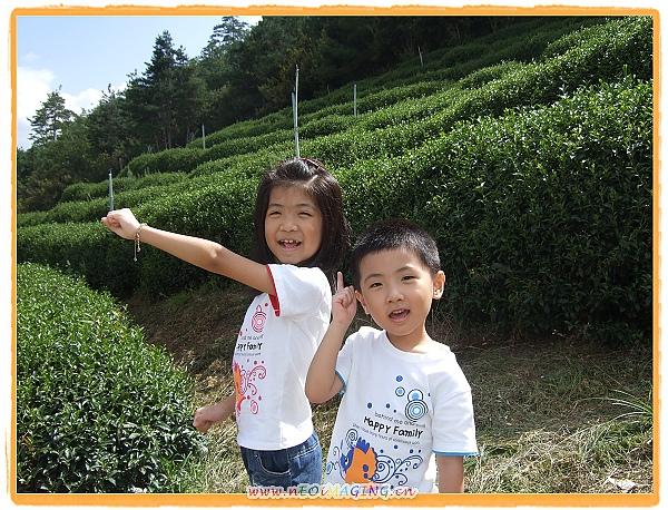 2010武陵農場之旅[Day 1]17.jpg
