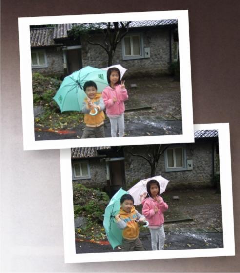 草山國際藝術村[2010台北花遊記]3.jpg