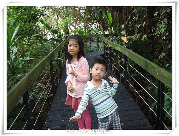 芝山文化生態綠園[2010台北花遊記]14.jpg