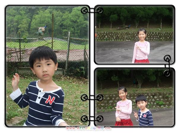 2011客家桐花祭[親子森林派對]24.jpg
