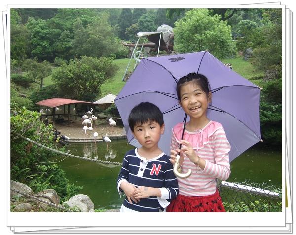 2011客家桐花祭[親子森林派對]19.jpg
