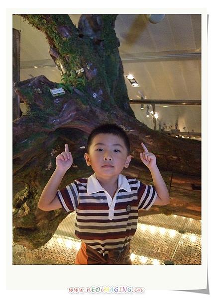 蘭陽博物館II7.jpg