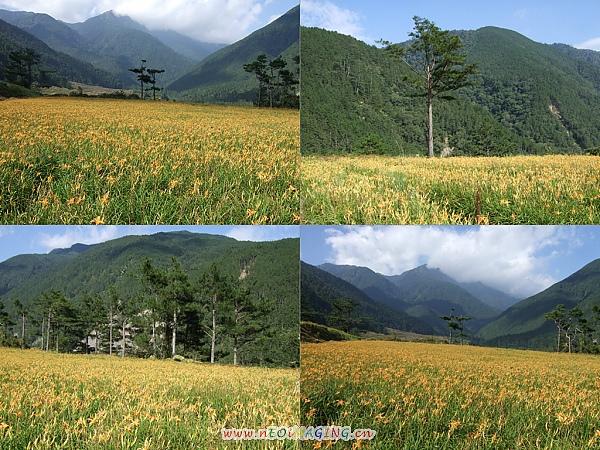 2010武陵農場之旅[Day 1]27.jpg
