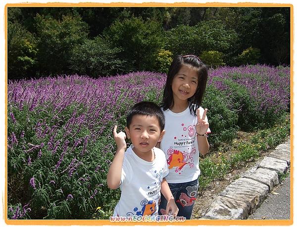 2010武陵農場之旅[Day 1]2.jpg