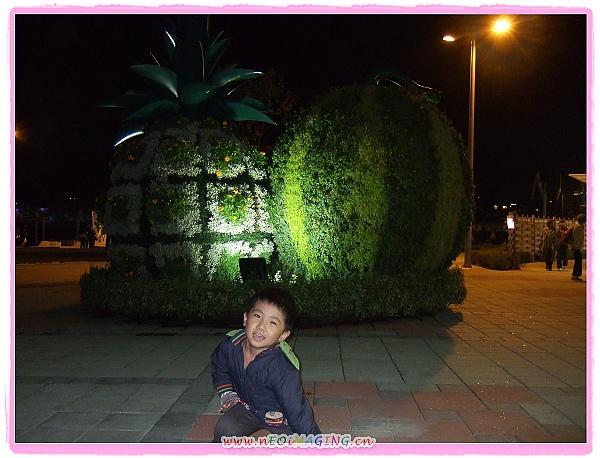 2010 臺北國際花卉博覽會[大佳河濱公園區]17.jpg