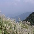 20061015爬爬團大屯山連峰行 019.jpg