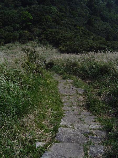 20061015爬爬團大屯山連峰行 022.jpg