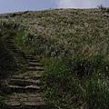 20061015爬爬團大屯山連峰行 034.jpg